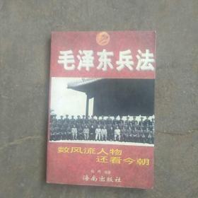 毛泽东兵法
