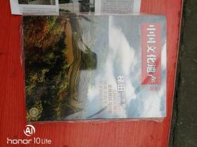 中国文化遗产2009.1