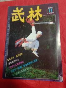 武林1996年第11期
