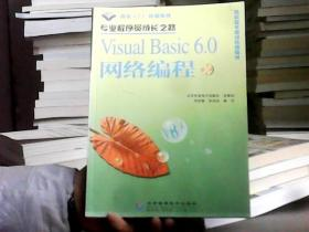 Visual Basic 6.0网络编程