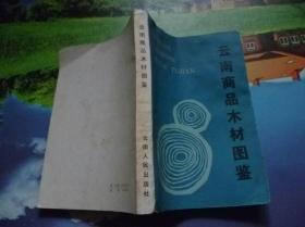云南商品木材图鉴