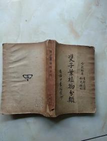 双子叶植物分类一册