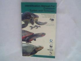 常见龟鳖类识别手册(英文版)