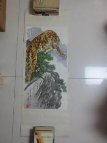 胡爽庵 虎(2开,年画)未用过