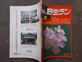 自然 野生1991.2(日文原版花卉期刊)