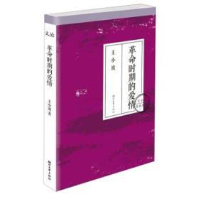 革命时期的爱情(王小波传世经典) 正版 王小波 9787533937034