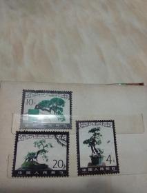 T61盆景邮票三张