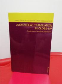 Audiovisual Translation in Close-Up: Practical and Theoretical Approaches (视听翻译的详细考察:实践与理论之进路)研究文集