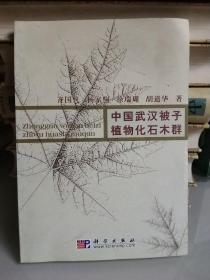 中国武汉被子植物化石木群