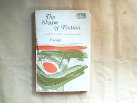 英文原版 The Shape of Fiction STORIES FOR COMPARISON Casty