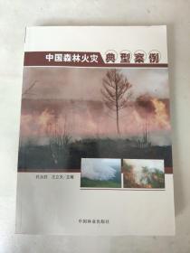 中国森林火灾典型案例