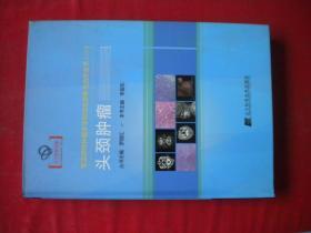 《头颈肿瘤》,16开精装李振东著,辽宁科技2015.3一版一印,6905号 ,图书