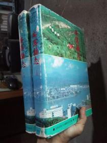 安溪县志 上下册 1994年一版一印 精装带书衣 品好干净  书衣破损