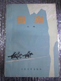 雪崩(馆藏正版)