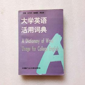 大学英语活用词典
