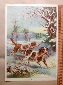 50年代年画宣传画《狗》-16开