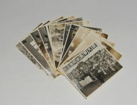 原沙市市公安局副局长,沙市市委副书记赖玉坤追悼会照片(12张) 1983年  尺寸12.5*9cm