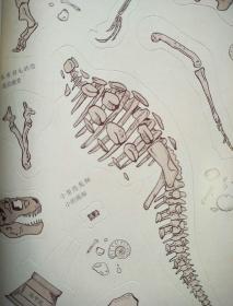 挖挖挖!探秘恐龙王国