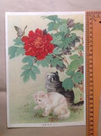 50年代年画宣传画 陆抑非 《猫蝶牡丹》-16开