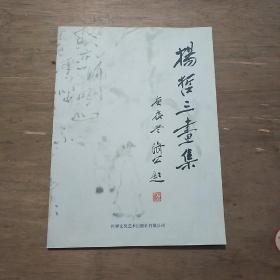 杨哲三画集