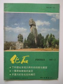 化石 1989年第3期