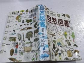 原版日本日文书 自然図鑑―动物.植物を知るために- さとラち蓝 福音馆书店 1997年5月 32开软精装