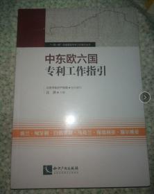 中东欧六国工作指引 汪洪 9787513033510 知识产权出版社 正版塑封
