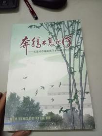 奔腾不息的河-五图河农场知青下乡40周年纪念集