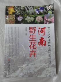 河南野生花卉(16开铜板彩印)