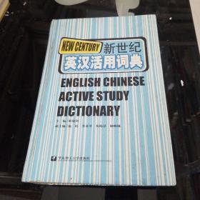 新世纪英汉活用词典