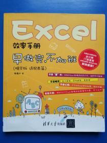 Excel效率手册:早做完,不加班(精华版 透视表篇)