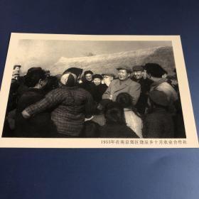 【老照片】毛泽东视察南京郊区饶辰乡(卖家不懂照片,买家自鉴,售出不退)