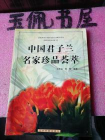 中国君子兰名家珍品荟萃