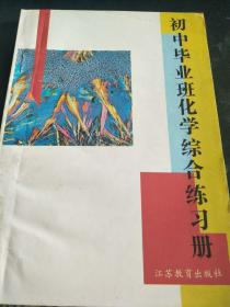 初中毕业班化学综合练习册(1995年)
