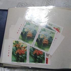 2000-24 君子兰邮票(两套全)