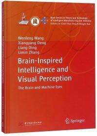 类脑智能与视觉感知(英文版)