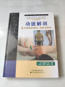 功能解剖:—肌与骨骼的解剖、功能及触诊