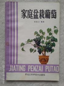 家庭盆栽葡萄