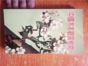 中国木本观赏植物 图鉴1