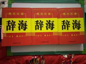 现代汉语辞海(上中下三册全)