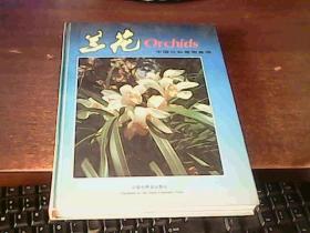 兰花 中国兰科植物集锦