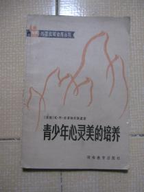 青少年心灵美的培养--外国教育论著丛书