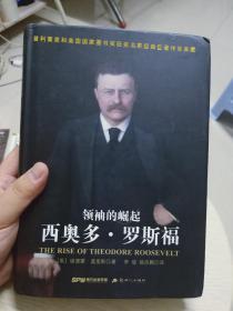领袖的崛起:西奥多.罗斯福