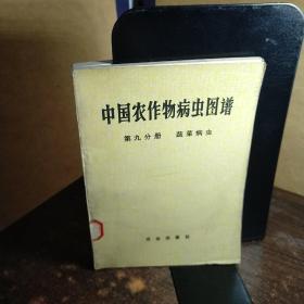 中国农作物病虫图谱――第九分册/蔬菜病虫