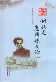 经典藏书书系:钢铁是怎样炼成的(全译本)