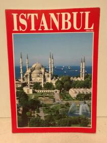 伊斯坦布尔:历史、建筑、文化 全彩画册 Istanbul  (国际与城市)英文原版书