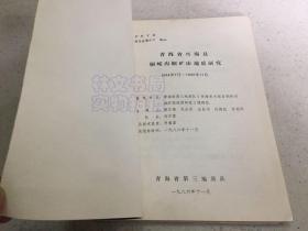 青海省兴海县铜峪沟铜矿床地质研究