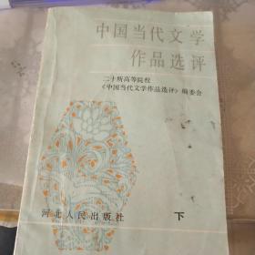 中国当代文学作品选评 下