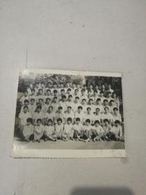 合影老照片15X12公分