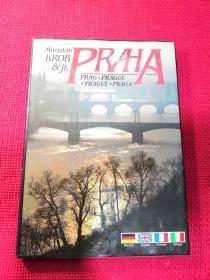 praha 布拉格城市画册